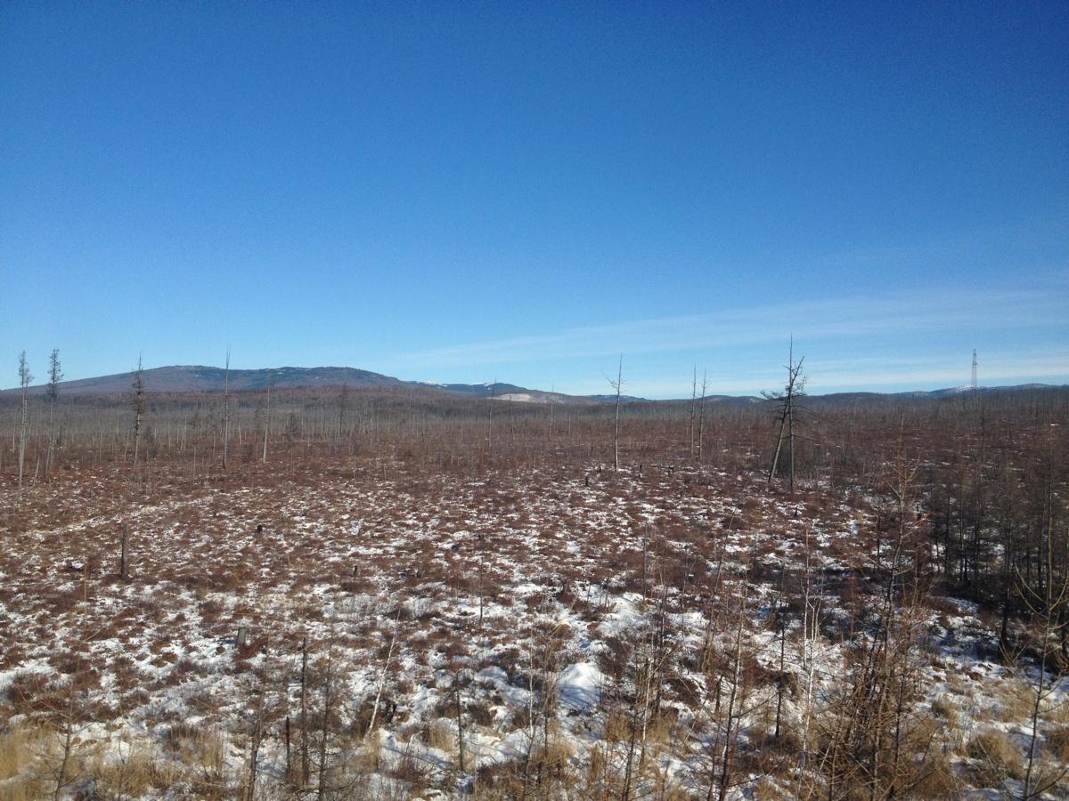 East Siberia plain